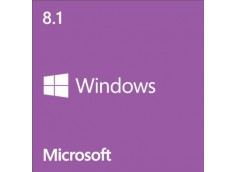 Windows 8.1 64bit OEM